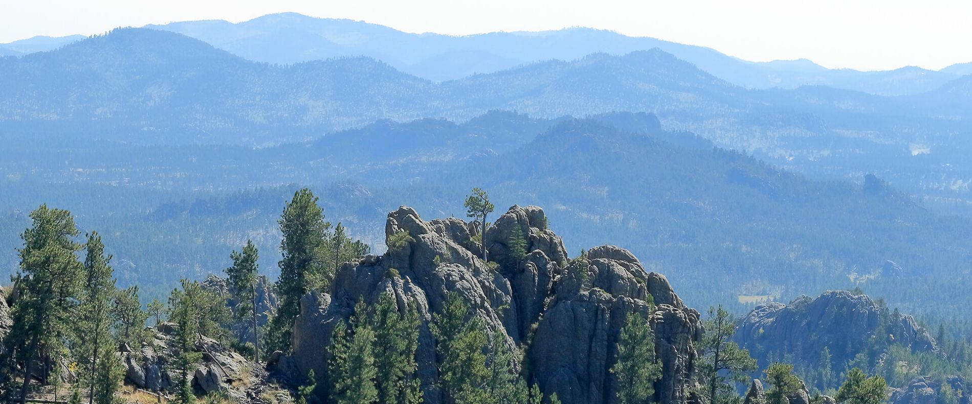 Photo of the Needles in the Black Hills of South Dakota.